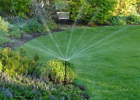 A Guide To Garden Watering Systems