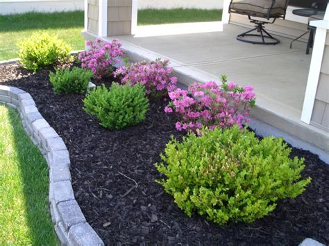 lanscaping plants easy landscaping ideas for beginners mybktouch com