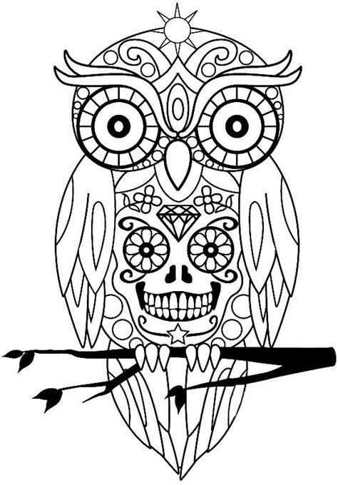 Pin by Kim Ellington on Patterns | Owl coloring pages, Coloring books, Coloring book pages