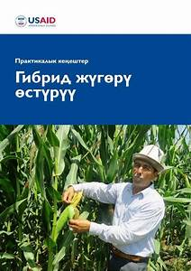 New Usaid Farming Guides Help Farmers Avoid Common