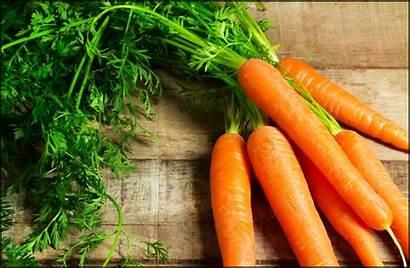 Carrots Facts Fun Health Benefits Read