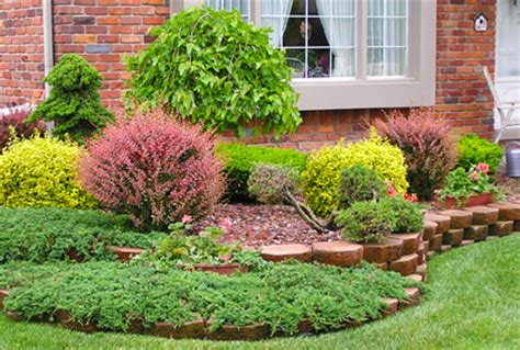landscape design types best types of shrubs for landscaping designs photos