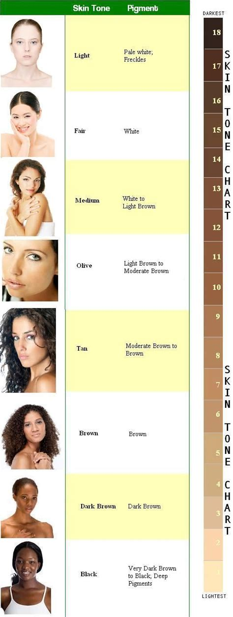 Skin Tones by Skin Color Chart Character Development Character
