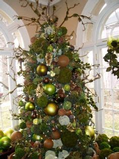 1000 images about holiday christmas tree styles on