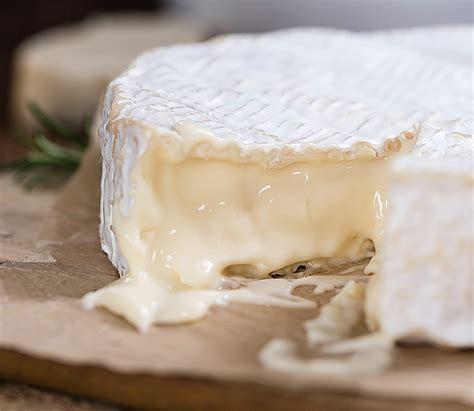 Augsta tauku satura svaigais siers - Piena produkti - LPCS