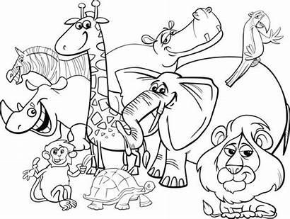 Coloring Illustrations Vector Animals Cartoon Safari Clip