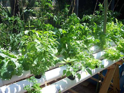 Hydroponic Gardening by Hydroponics Www Herbanfarmer