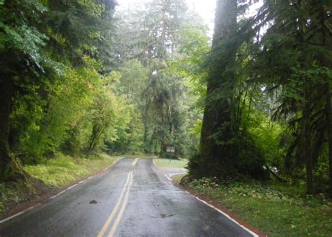 sol duc road soleduck valley olympic national park