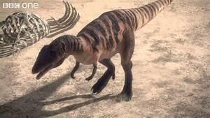 Carcharodontosaurus - Planet Dinosaur - Episode 1 - BBC ...