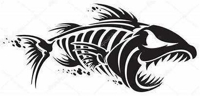 Fish Skeleton Depositphotos Drawing Shark Poisson Stencil