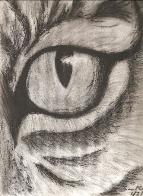 easy animals sketches charcoal google search art
