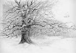Tree Pencil Sketch Drawing