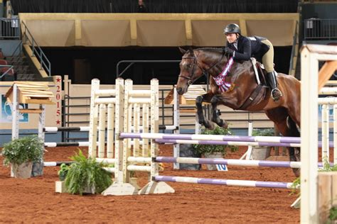 jumping fences horse lucky quarter equitation madison champion horses youth fence american its detail youtu