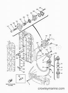 2003 yamaha outboard 115hp f115txrb parts lookup With diagram of 2005 f225txrd yamaha outboard fuel injection pump 1 diagram