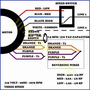 Single Phase 2 Speed Motor Wiring Diagram