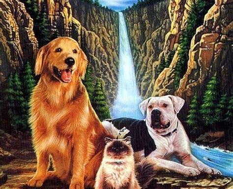 top  films  animal lovers