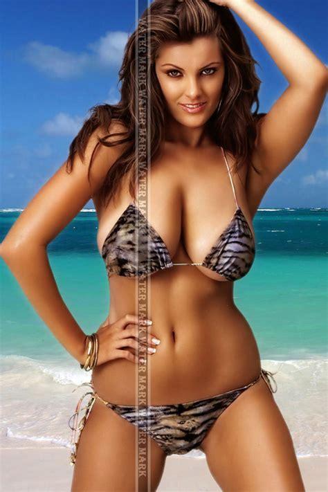 177 fridge tool box magnet pin up girl stunning brunette