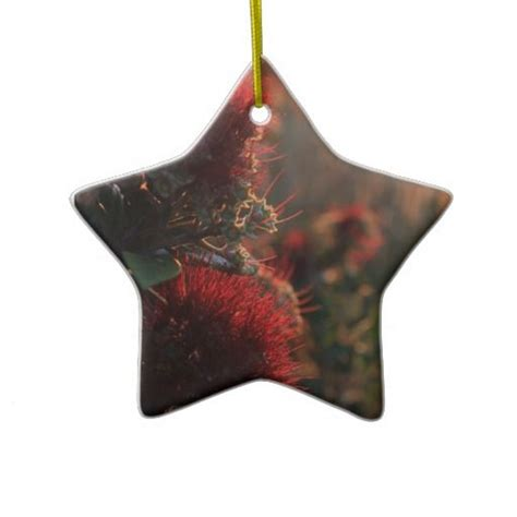24 best images about new zealand christmas ornaments on