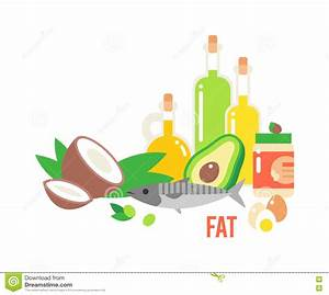 Different Kind Of Healthy Fat Stock Vector - Illustration ...