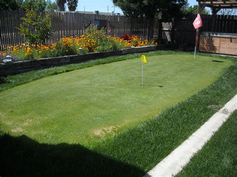 How To Make A Putting Green In Backyard by Putting Greens