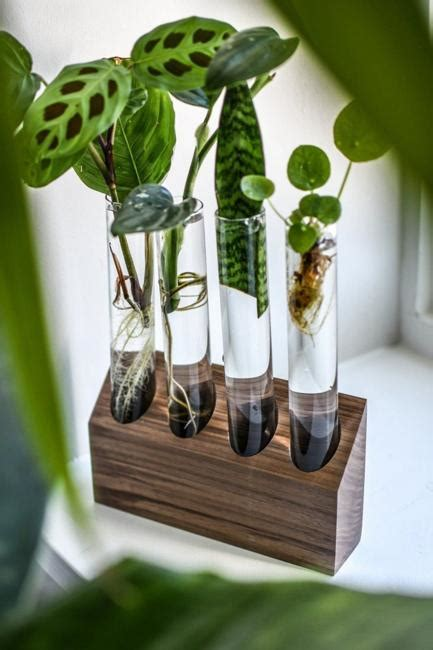 original home decorations  eco gifts test tube vases