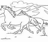 Coloring Horse Pages Horses Clydesdale Rearing Herd Realistic Easy Wild Mustang Getcolorings Printable Getdrawings Colorings Wonderful sketch template