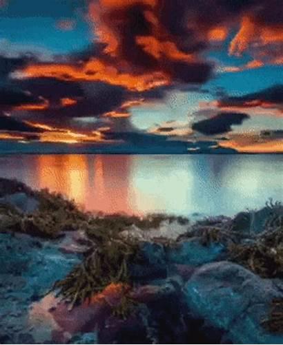 Scenery Water Nature Gifs Tenor