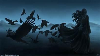 Raven Dc Gothic Dark Background Horror Birds