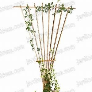 Treillage Plante Grimpante : treillage eventail bois fsc france treillages support grimpantes ~ Dode.kayakingforconservation.com Idées de Décoration