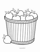 Apples Coloring Pages Theme Educatall sketch template