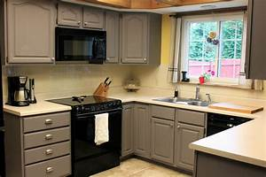 Painting old kitchen cabinets color ideas design decoration for Best brand of paint for kitchen cabinets with organic wall art