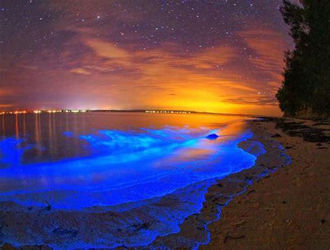 chambre romantique ile de cette plage des maldives où l 39 eau s 39 illumine la nuit
