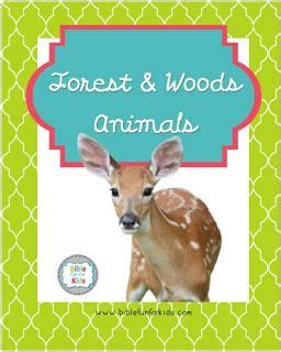 Makes the Forest Animals: Skunks Animal habitats