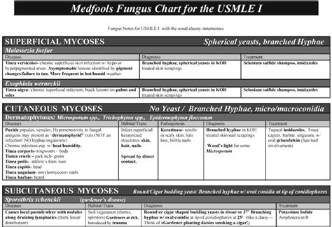 medfools template free downloads scutsheets patient trackers patient info sheets daily work sheets