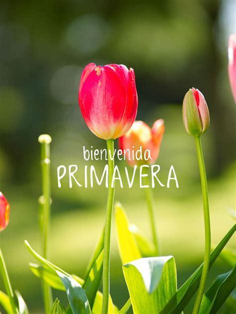 ¡Feliz primaverajcriss com Quotes Pinterest