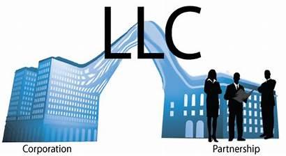 Llc Company Liability Limited Partnership Corporation Form
