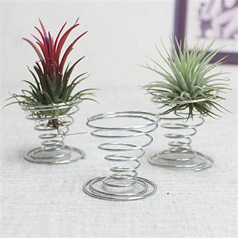 air plant tillandsia holder container flower planter home