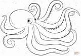 Coloring Octopus Cartoon Printable Drawing Dot Paper sketch template