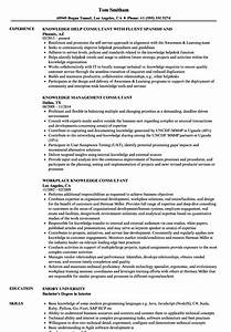 stunning lean six sigma consultant resume images example With resume consultant boston