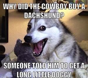 The Best Worst Jokes From Pun Husky - Mandatory | laugh it ...
