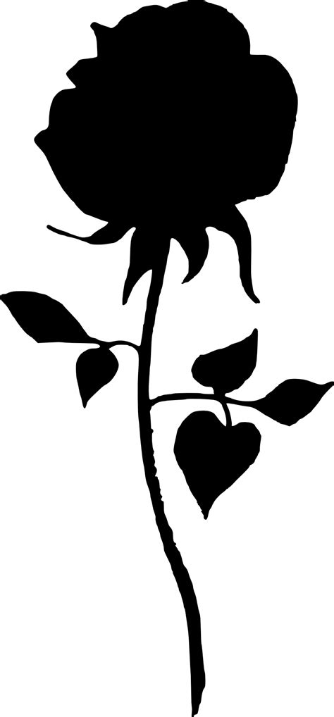 17 Rose Silhouette (PNG Transparent) | OnlyGFX.com
