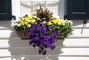 Blumenkästen Mit Bewässerung : 20 sommer fenster deko ideen blumenkasten bepflanzen ~ Lizthompson.info Haus und Dekorationen