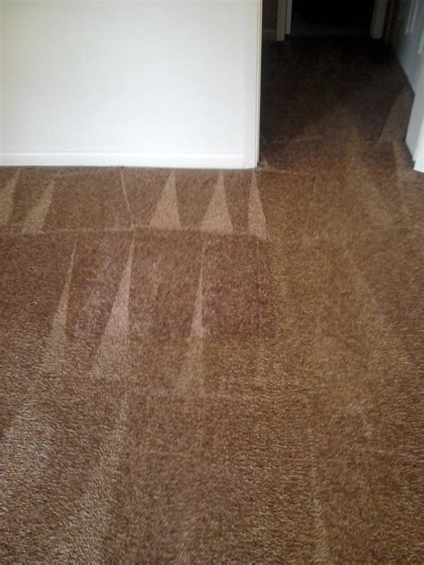 shaw flooring knoxville superior carpet cleaning knoxville carpet vidalondon