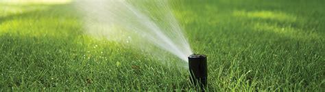 rotors impact sprinklers rain bird