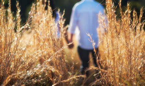 Country Life | AmO