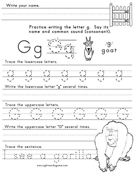 letter  sight words reading writing spelling
