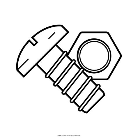 nut clipart colouring page nut colouring page transparent