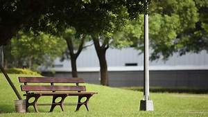A Park Bench In The Park Stock Footage Video 3030667 ...