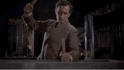 Dracula Vampire Helsing Van Horror Hammer Cushing
