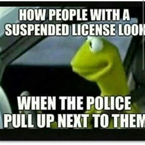 Funny Police Memes - 283 best kermit meme speaks images on pinterest funny